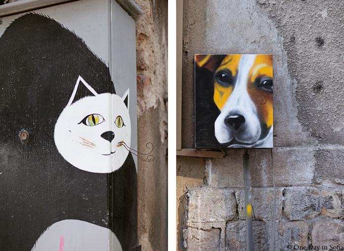 cat and dog street art