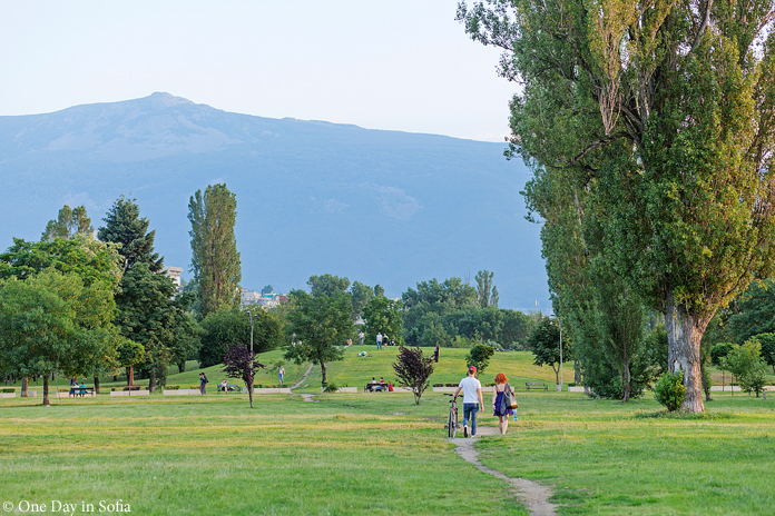 Mount Vitosha in distance