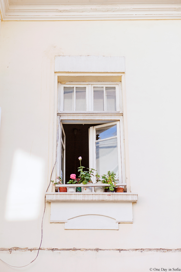 open window with flower pots