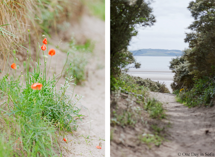 path to Rush beach