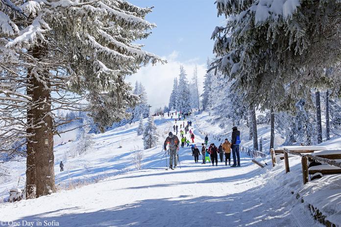 ski path in Vitosha mountain