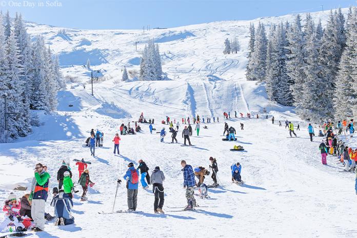 Aleko ski track