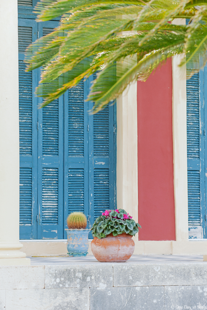 blue window shutters and flowers