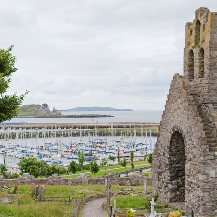 view of Howth harbour and abbey