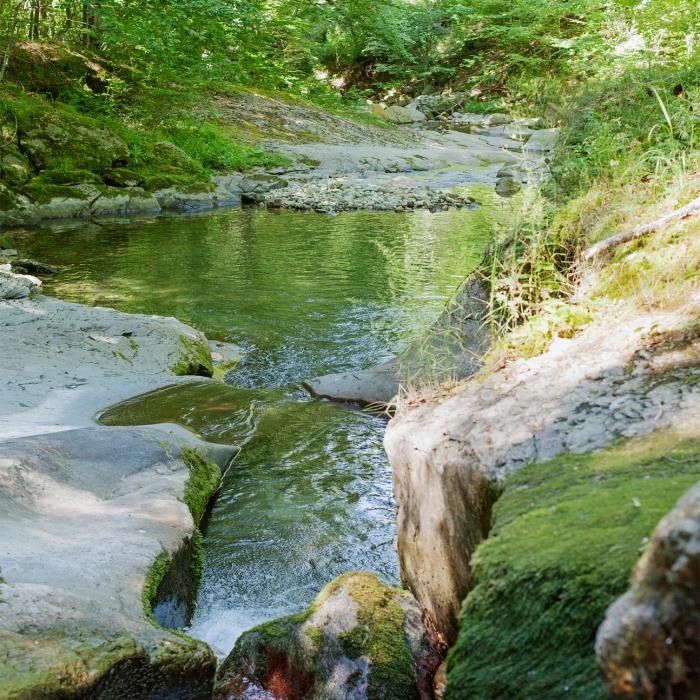 mountain river in Bulgaria