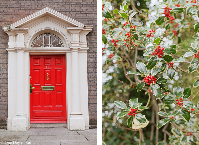 mistletoe and georgian door
