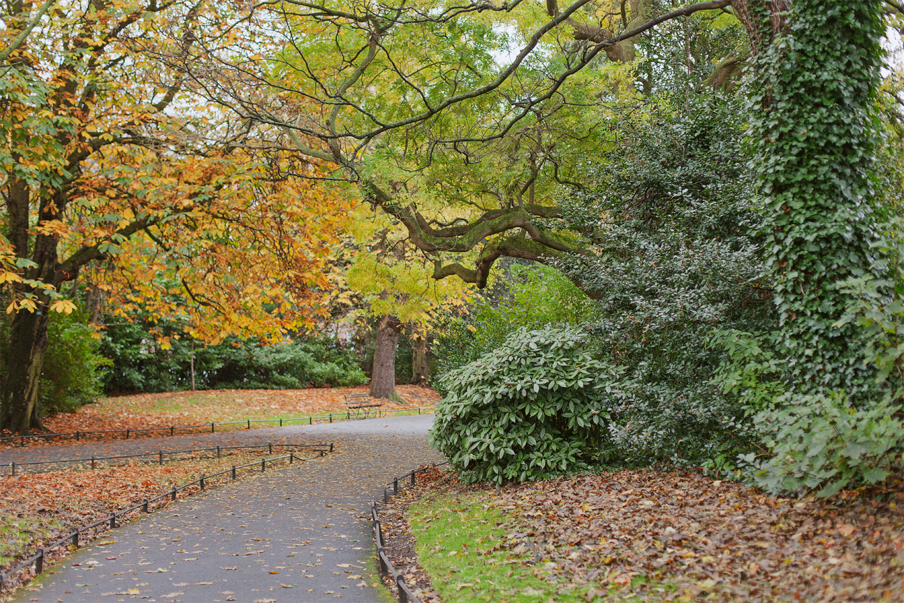 St Stephen's Green in autumn