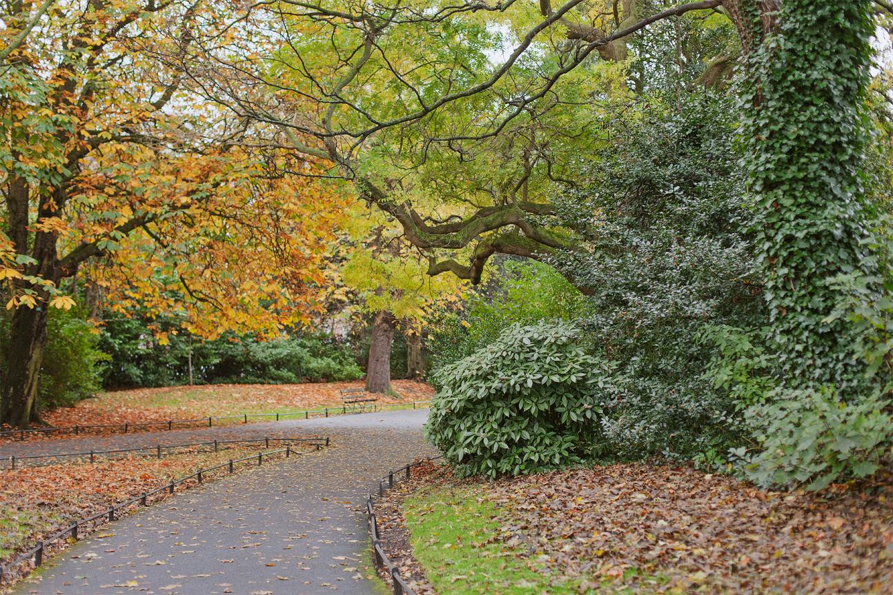 St Stephen's Green in autumn