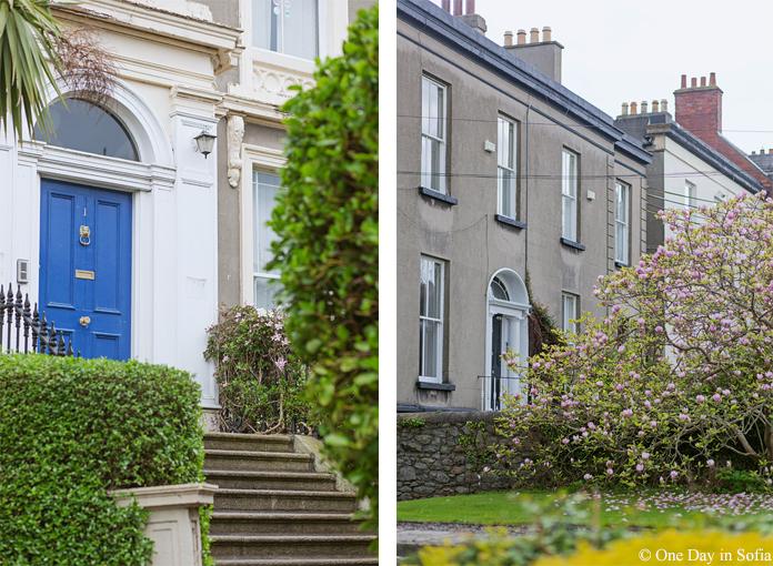 Georgian door and magnolia