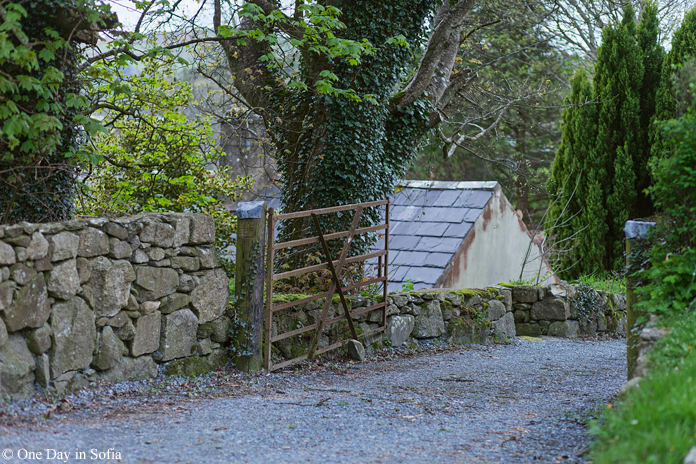 farm gate in Ireland